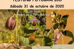 IMG-20201026-WA0035