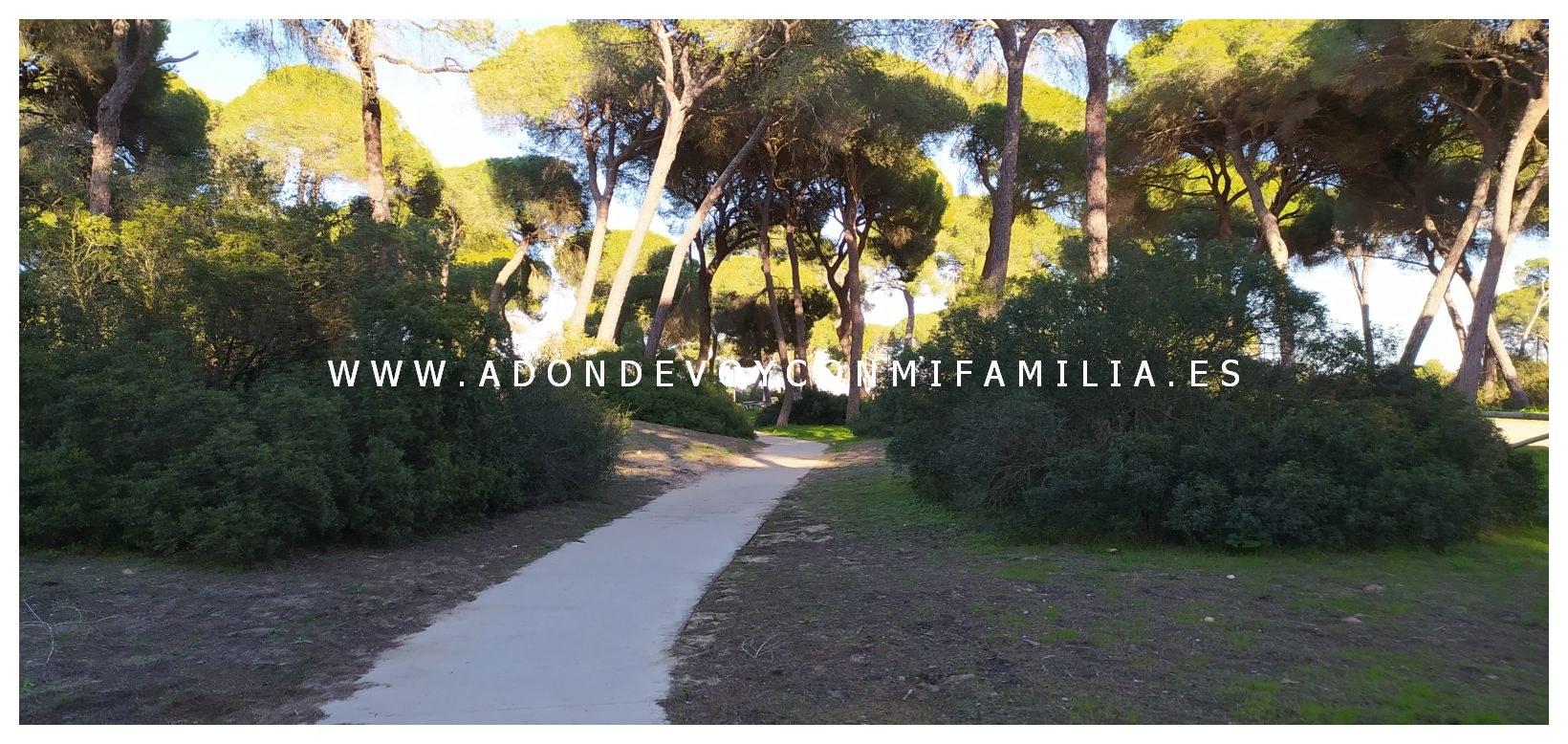 area-recreativa-la-ermita-adondevoyconmifamilia-11