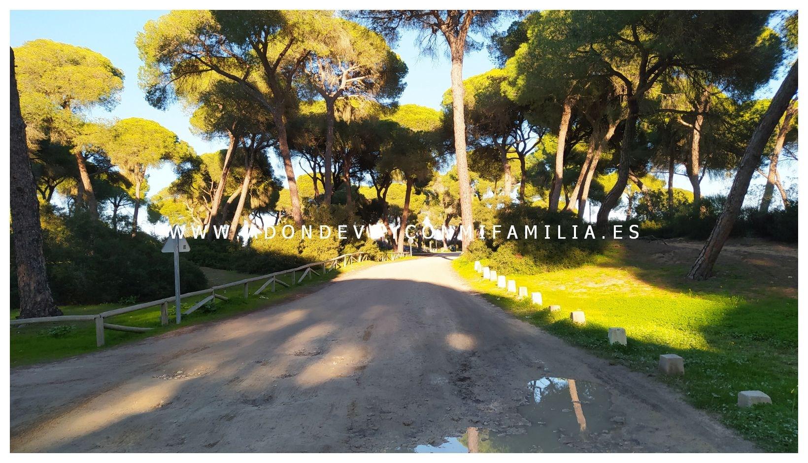 area-recreativa-la-ermita-adondevoyconmifamilia-20
