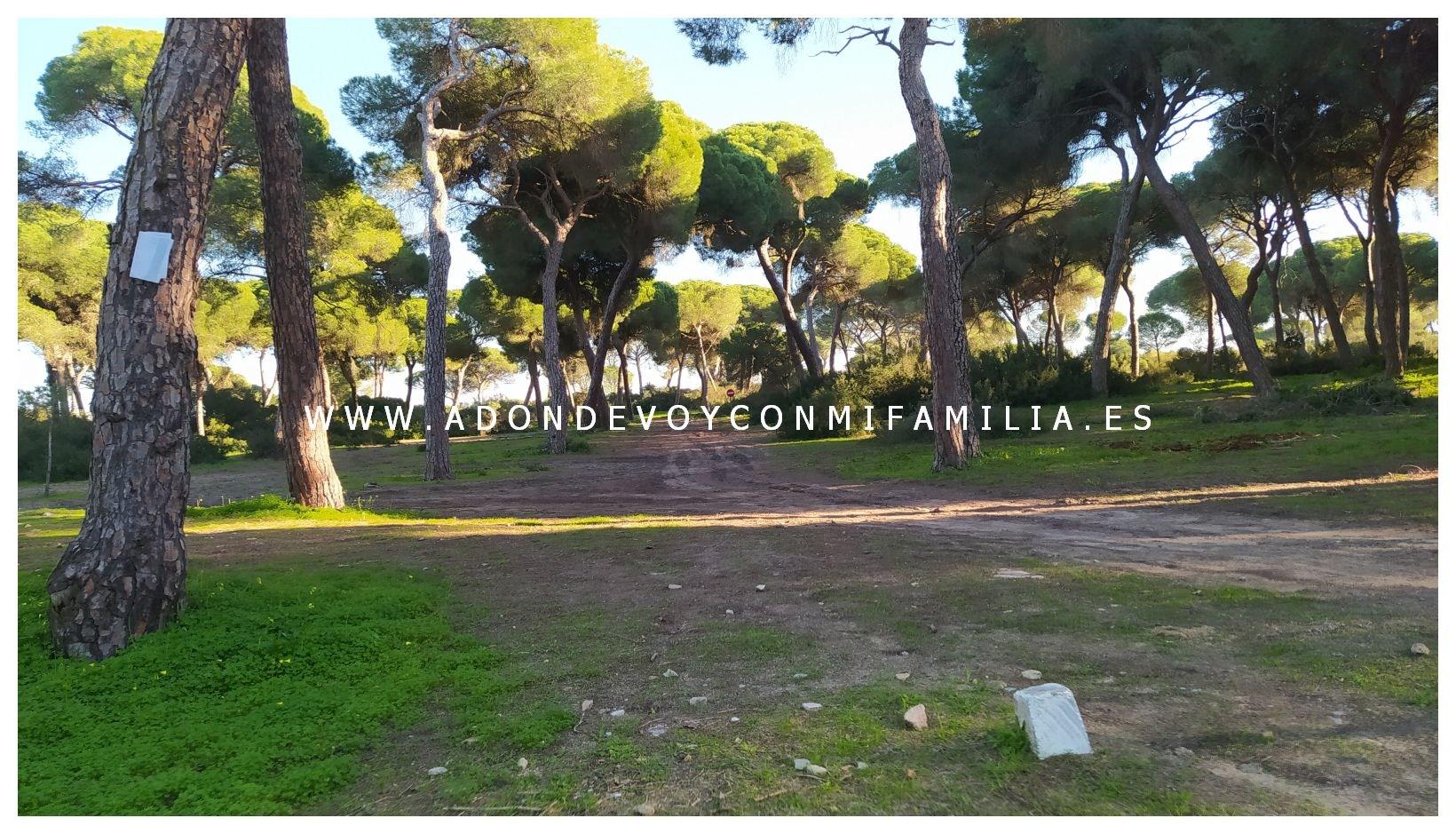 area-recreativa-la-ermita-adondevoyconmifamilia-21
