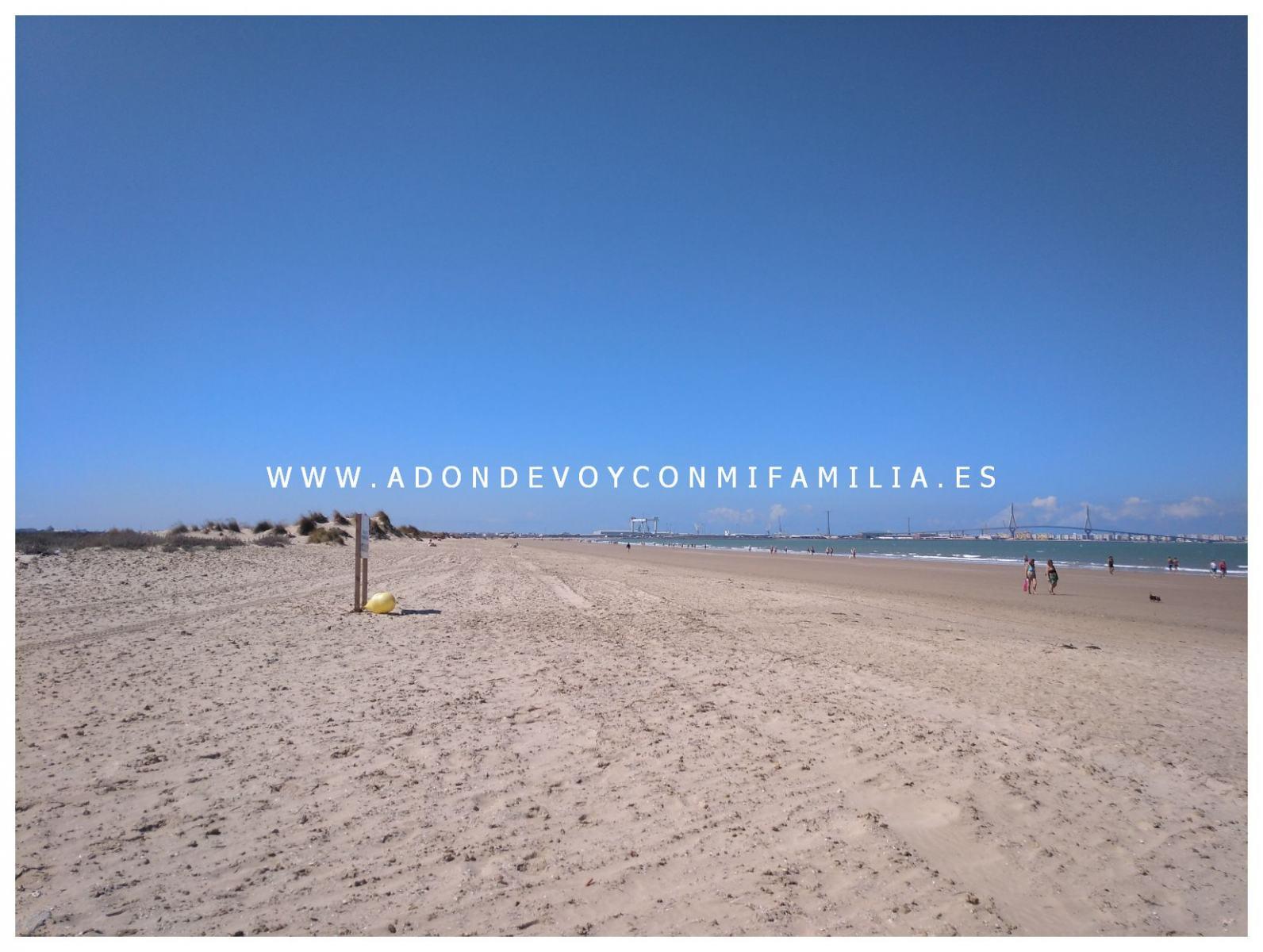 1_los-torunos-adondevoyconmifamilia-005