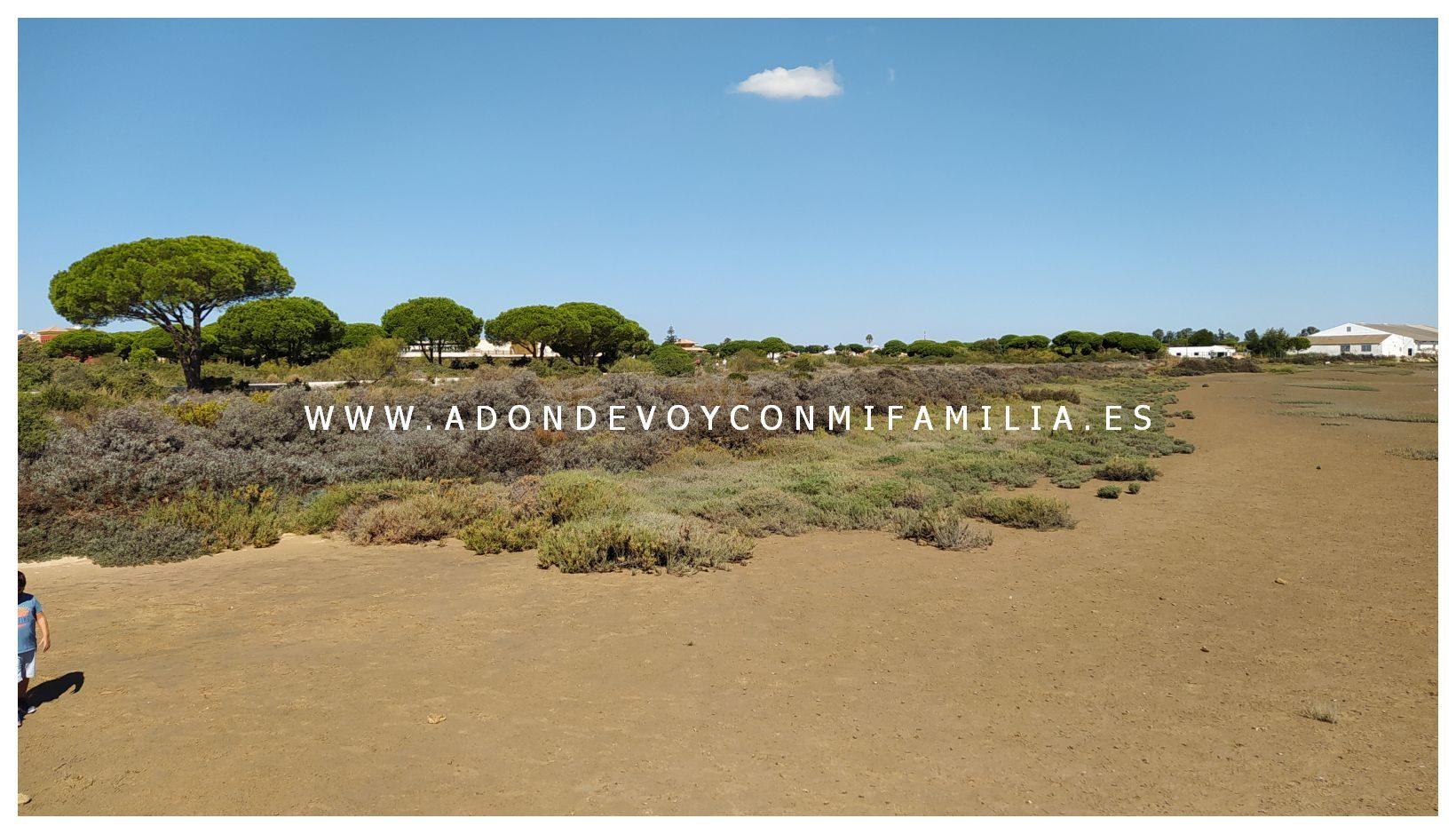 1_los-torunos-adondevoyconmifamilia-013