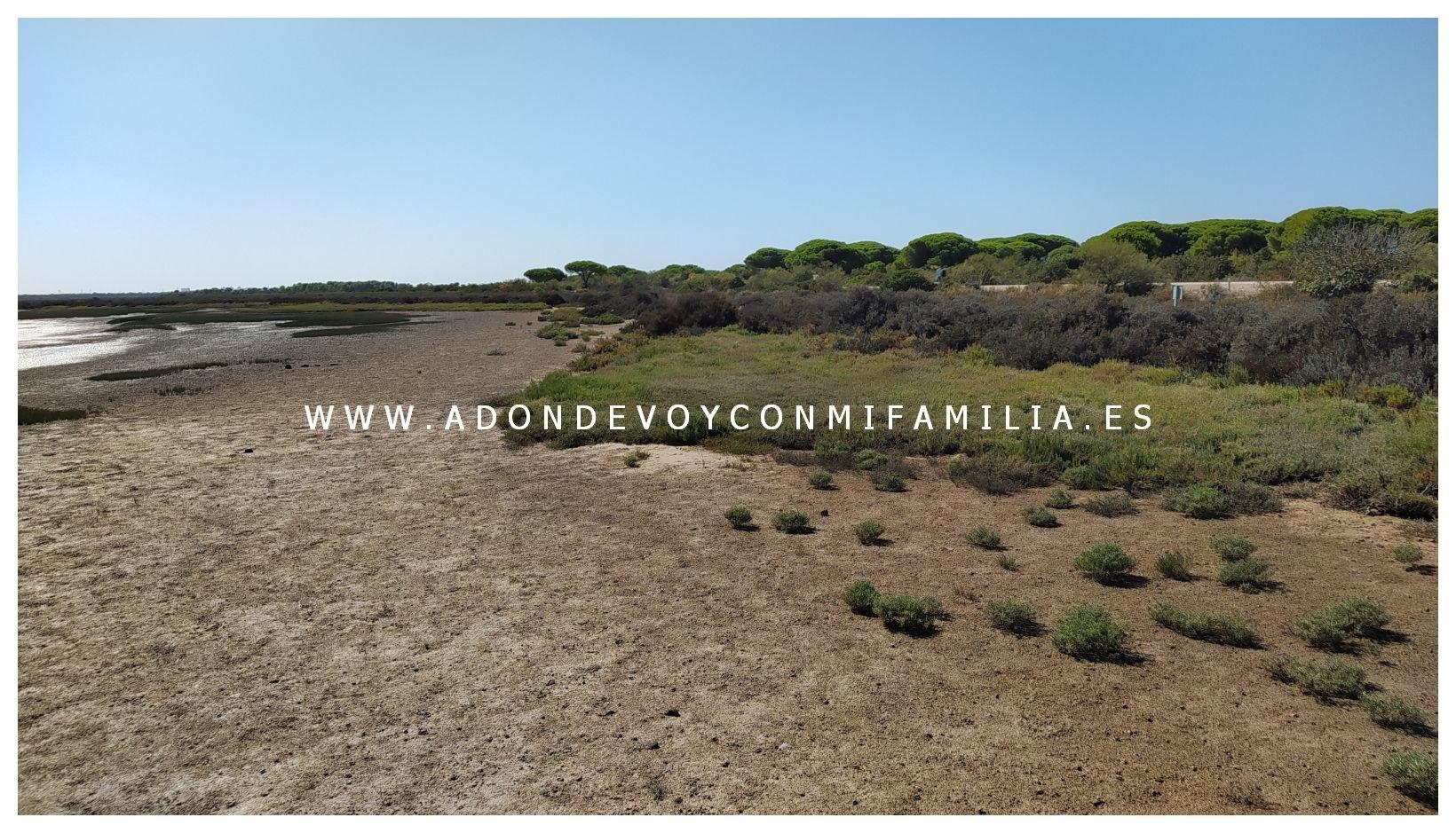 1_los-torunos-adondevoyconmifamilia-014
