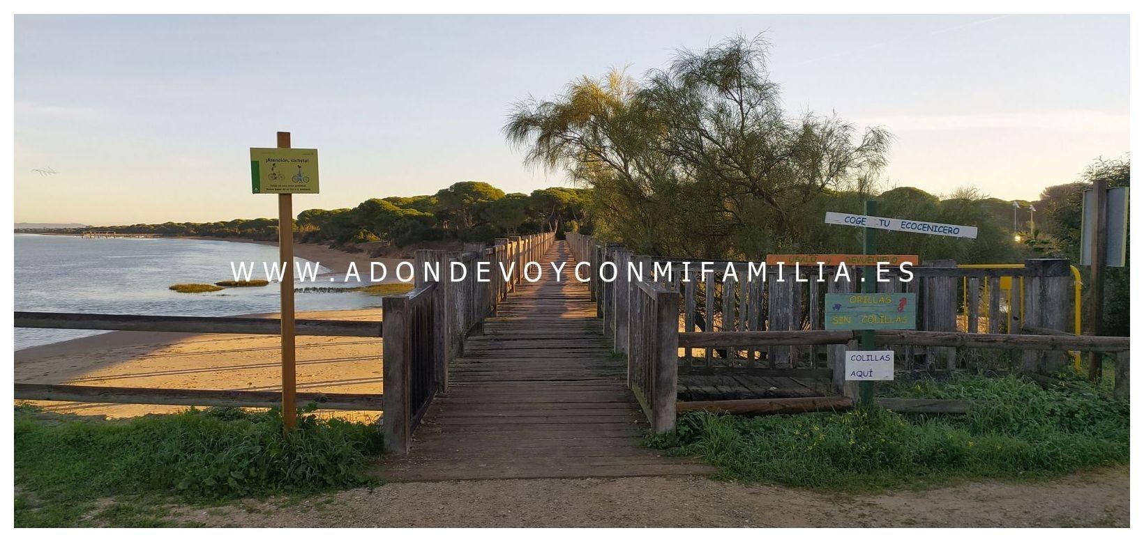 sendero-pinar-de-la-algaida-Adondevoyconmifamilia-05