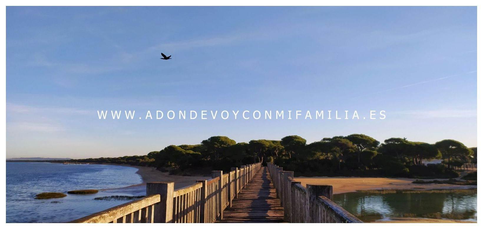 sendero-pinar-de-la-algaida-Adondevoyconmifamilia-06