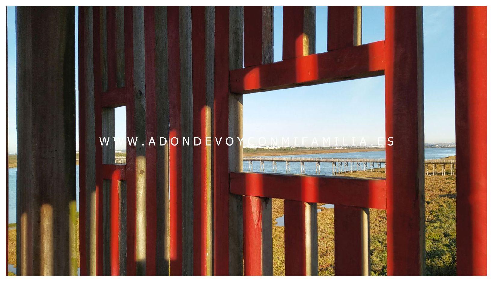 sendero-pinar-de-la-algaida-Adondevoyconmifamilia-15
