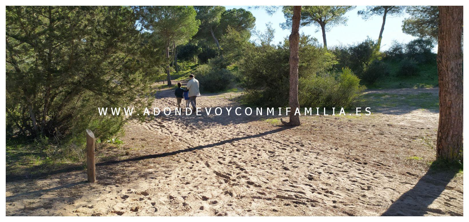 sendero-cerro-del-aguila-pinar-de-la-algaida-sanlucar-adondevoyconmifamilia-01
