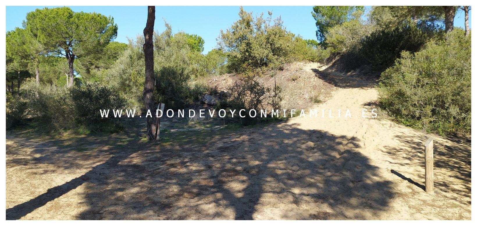 sendero-cerro-del-aguila-pinar-de-la-algaida-sanlucar-adondevoyconmifamilia-17