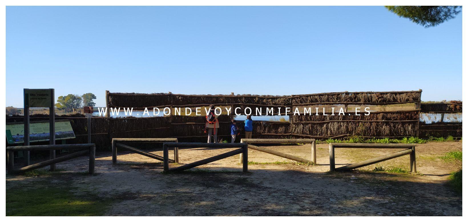 sendero-cerro-del-aguila-pinar-de-la-algaida-sanlucar-adondevoyconmifamilia-25