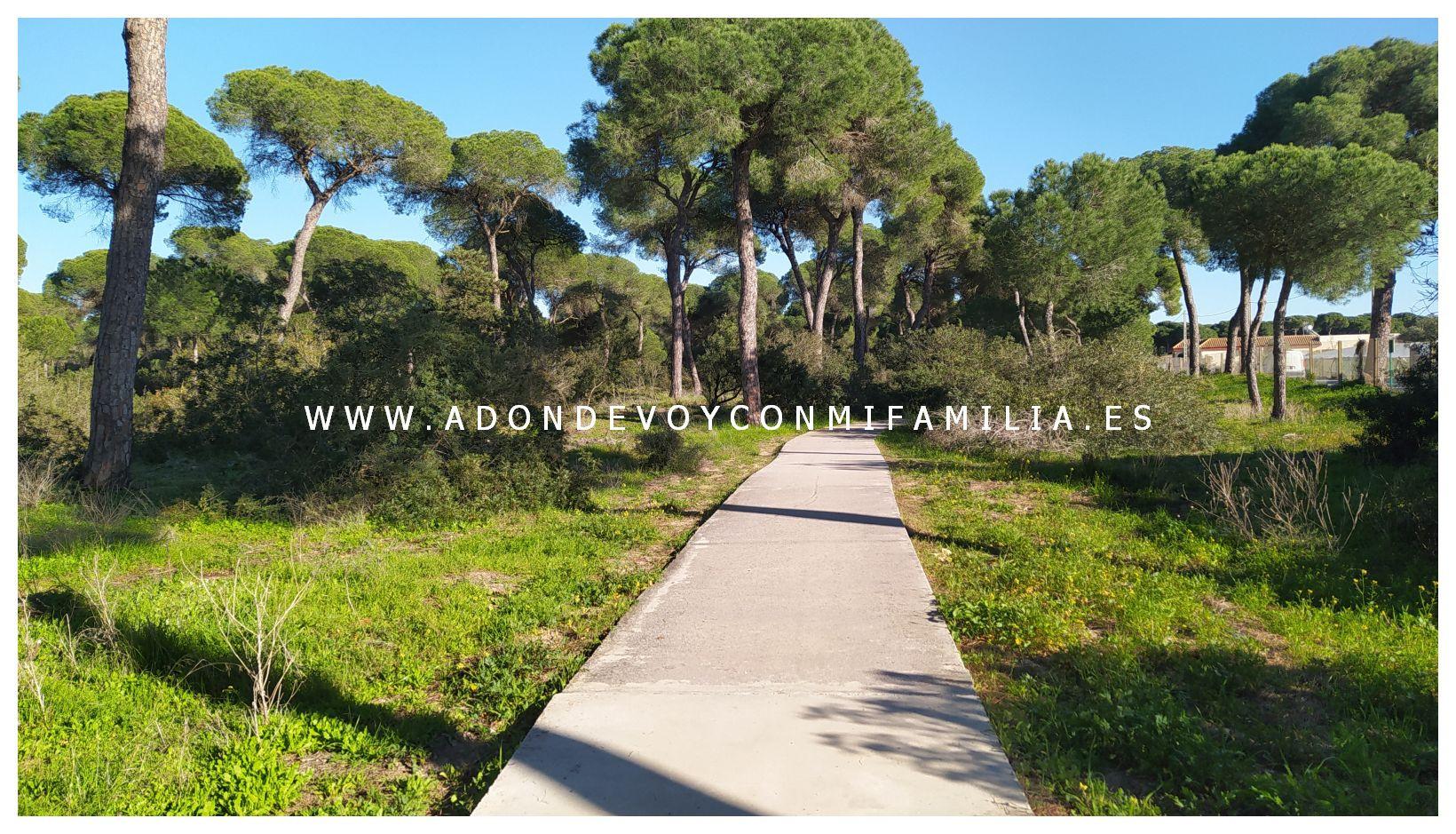 sendero-cerro-del-aguila-pinar-de-la-algaida-sanlucar-adondevoyconmifamilia-35