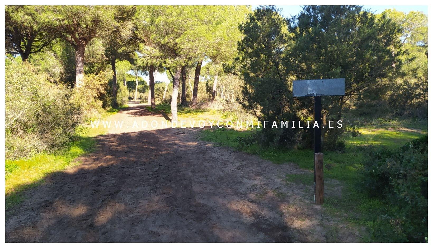 sendero-cerro-del-aguila-pinar-de-la-algaida-sanlucar-adondevoyconmifamilia-66