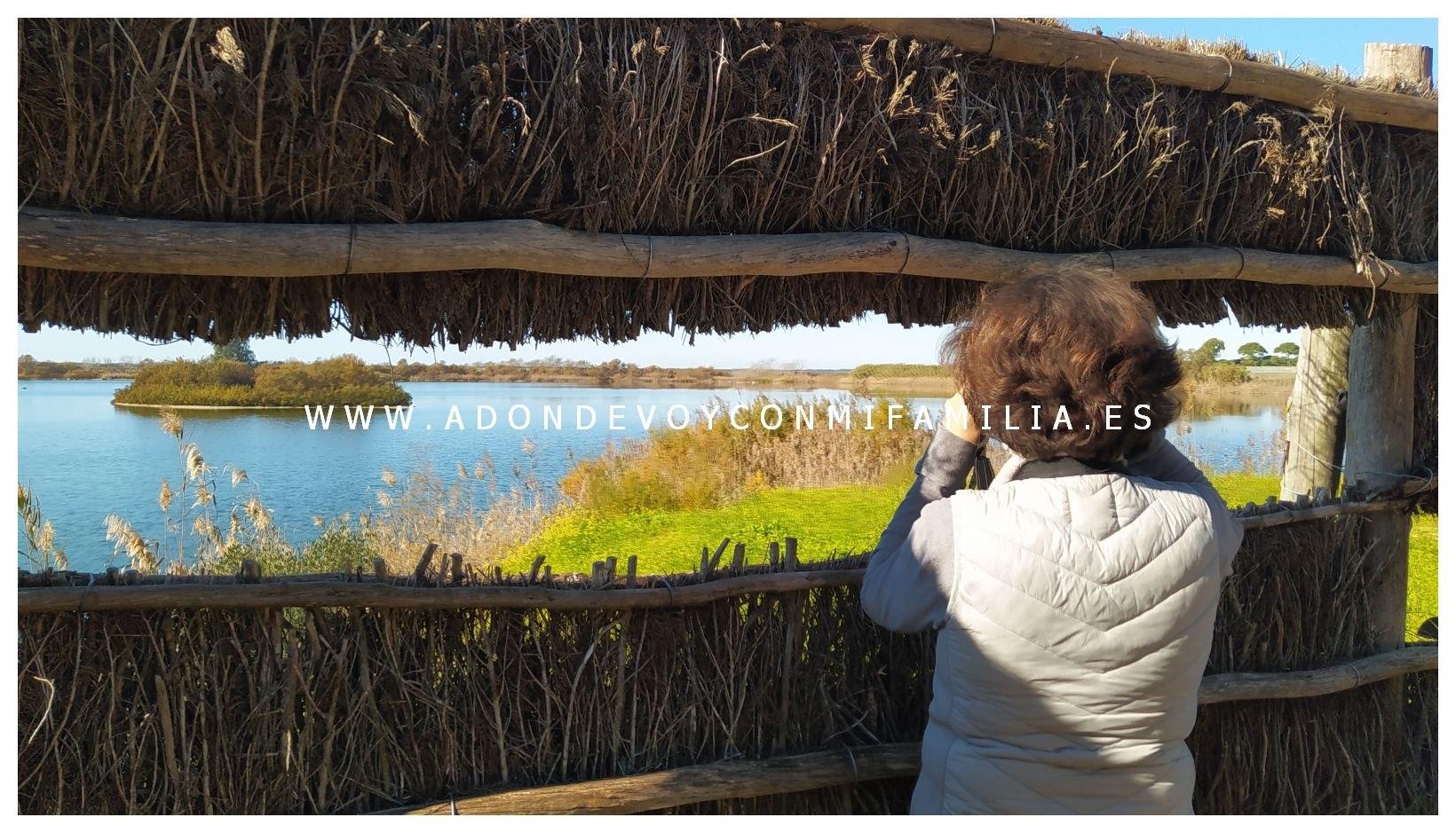 sendero-cerro-del-aguila-pinar-de-la-algaida-sanlucar-adondevoyconmifamilia-72