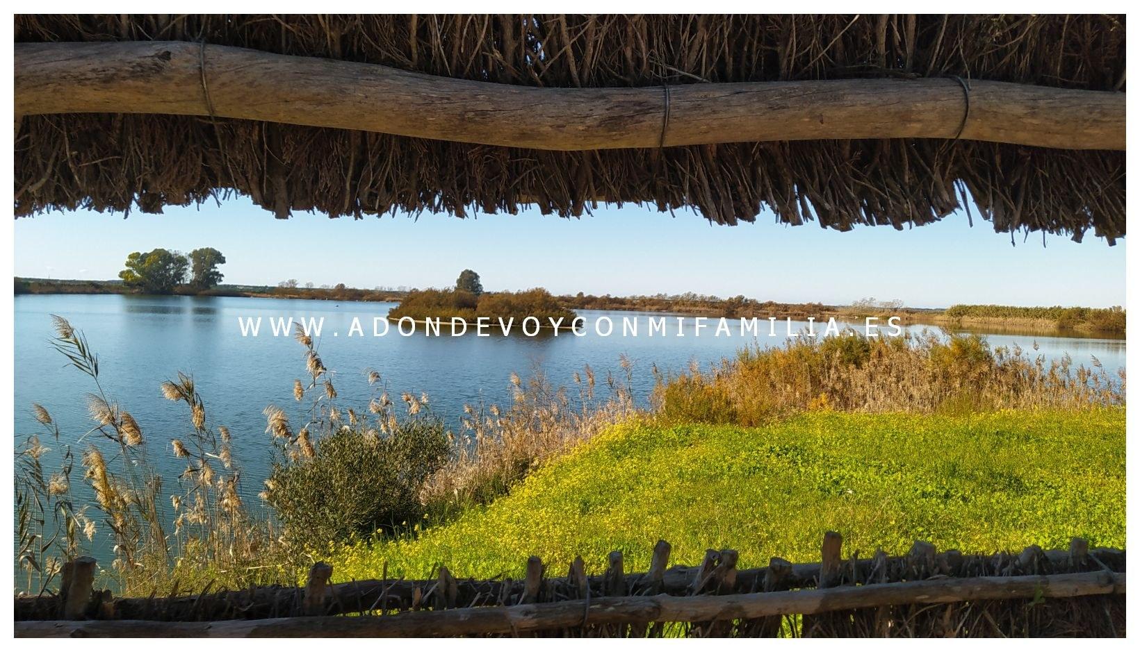 sendero-cerro-del-aguila-pinar-de-la-algaida-sanlucar-adondevoyconmifamilia-74