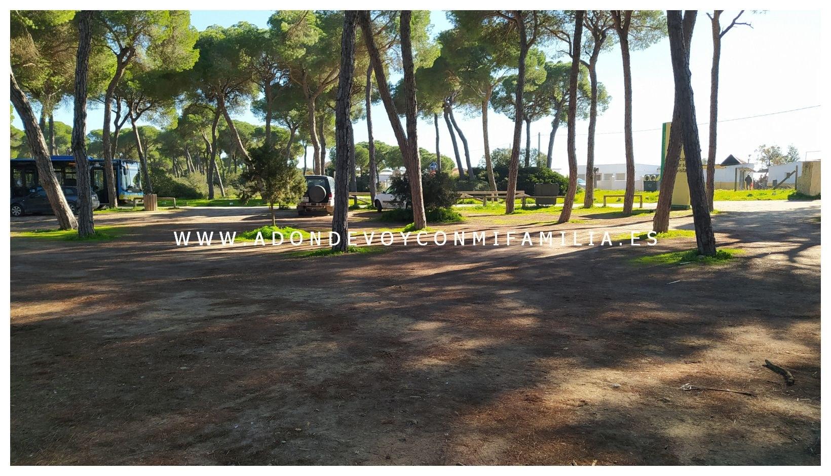 sendero-cerro-del-aguila-pinar-de-la-algaida-sanlucar-adondevoyconmifamilia-81