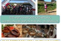 VII-feria-del-esparrago-Alcala-del-Valle-5