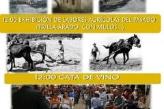 VII-feria-del-esparrago-Alcala-del-Valle-8