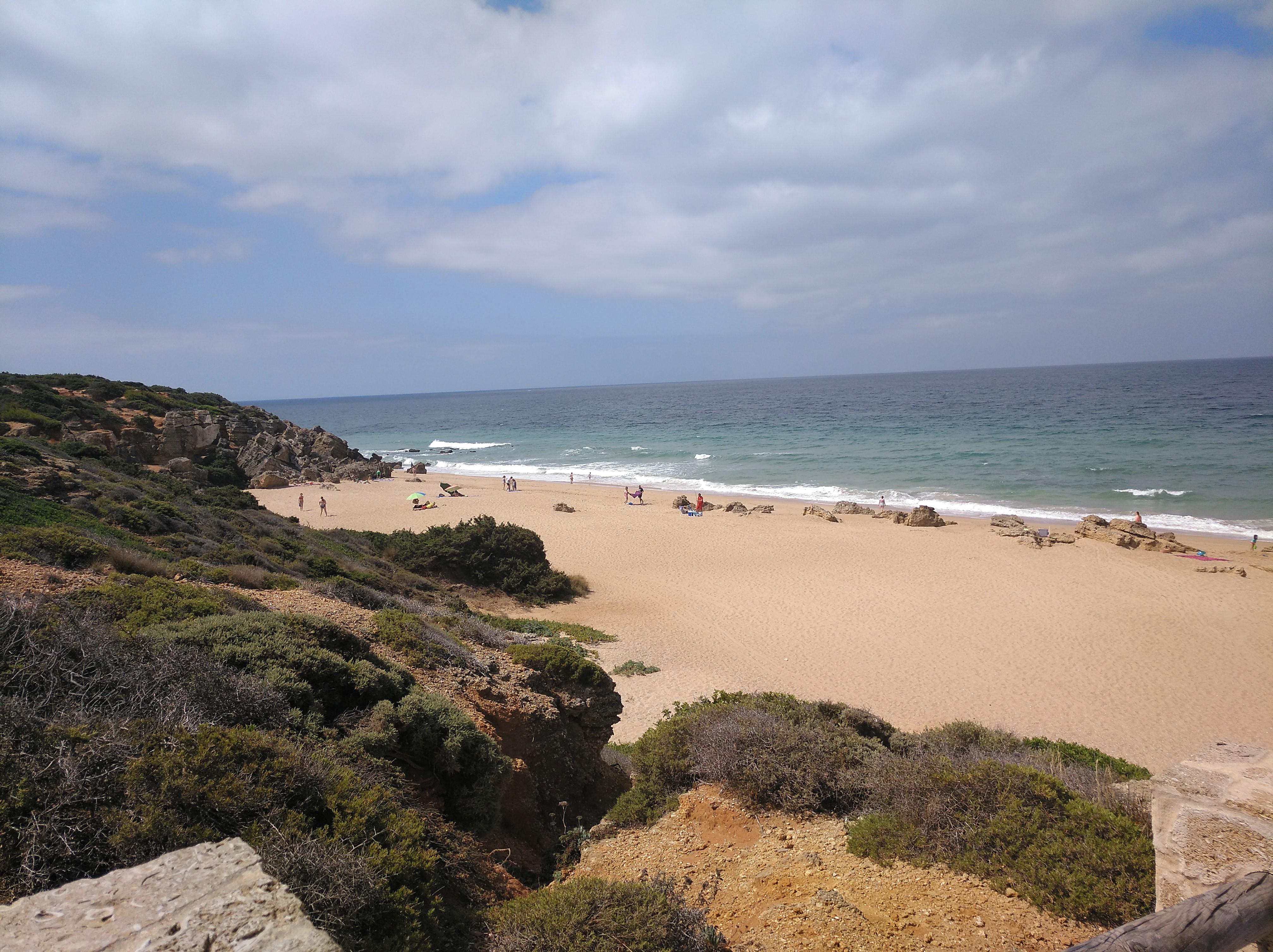 playas cala de roche conil