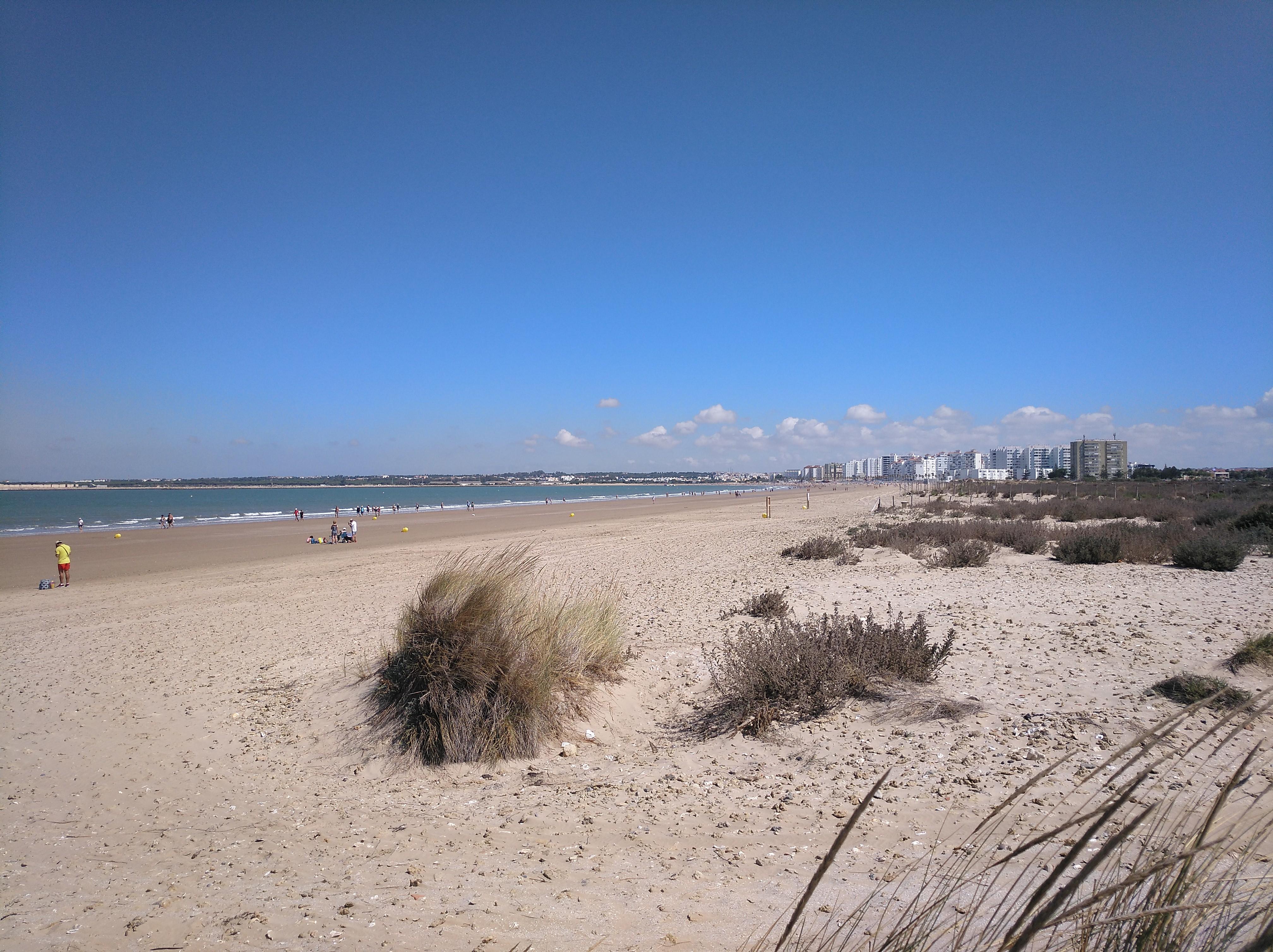 Playa de Levante (El Puerto de Santa María))