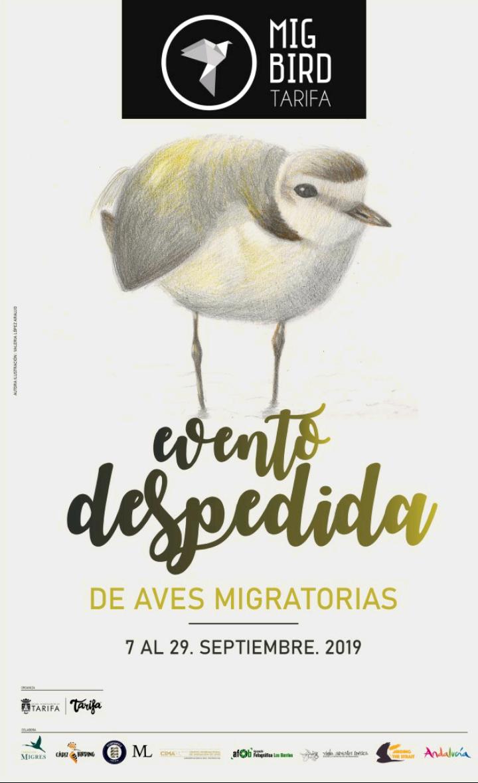 Despedida Aves Migratorias (Tarifa) Del 07 al 25 de Septiembre de 2019