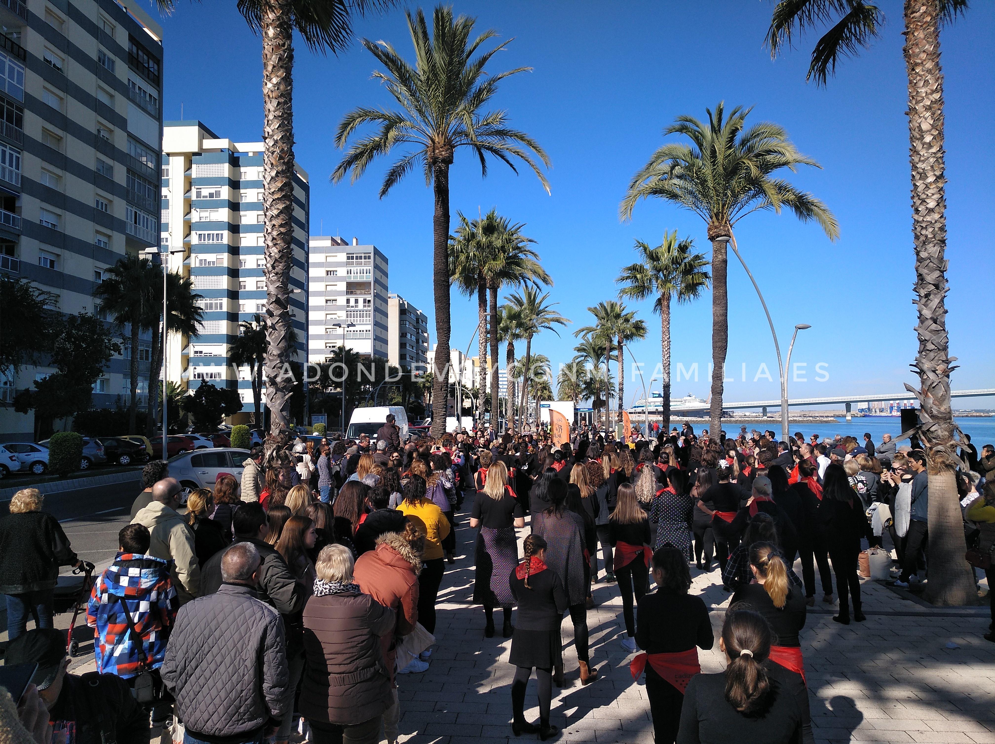 MI BLOG | Día Internacional del Flamenco con Niños (Provincia de Cádiz)