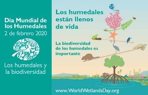 DÍA DE LOS HUMEDALES, Domingo 02 de Febrero de 2020