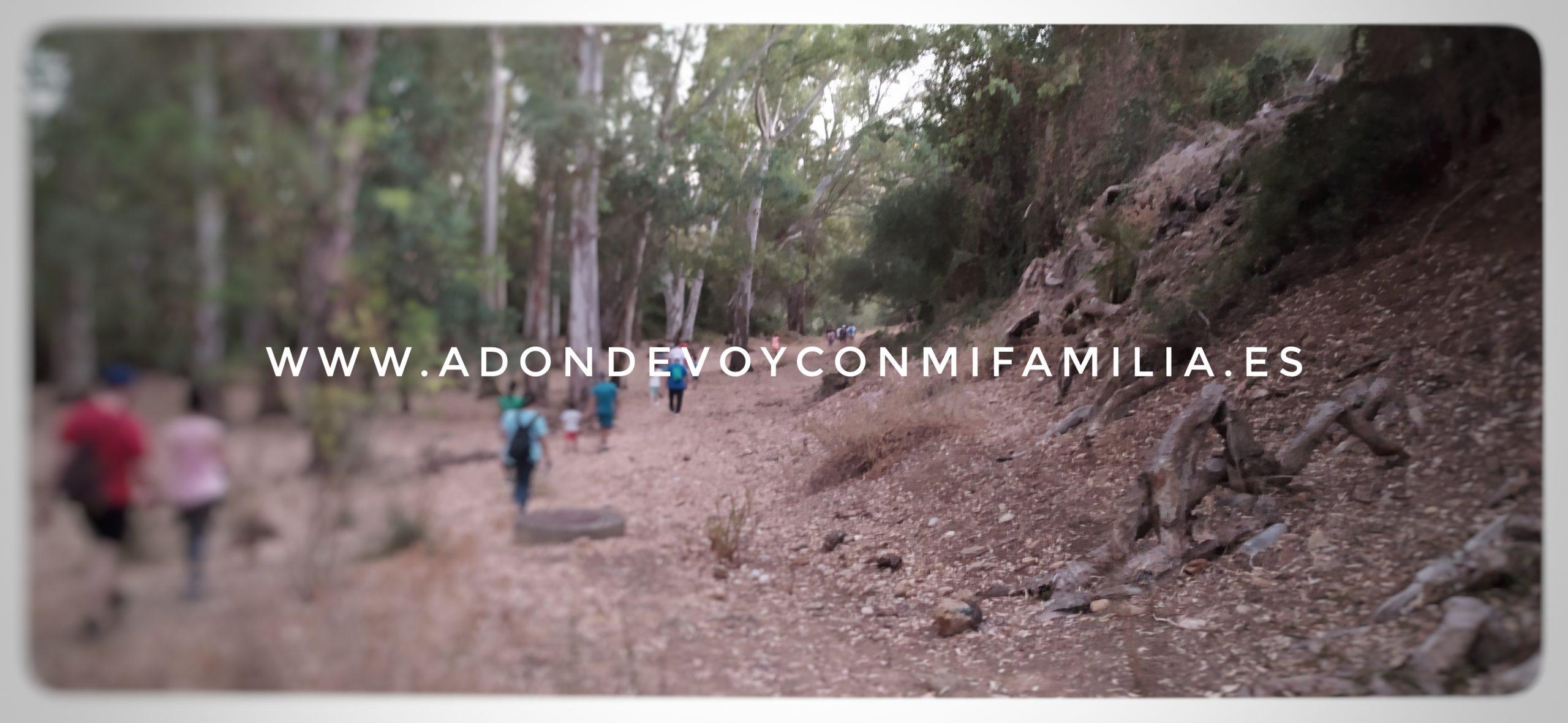 sendero los tajos de arcos adondevoyconmifamilia agosto 2020 (6)
