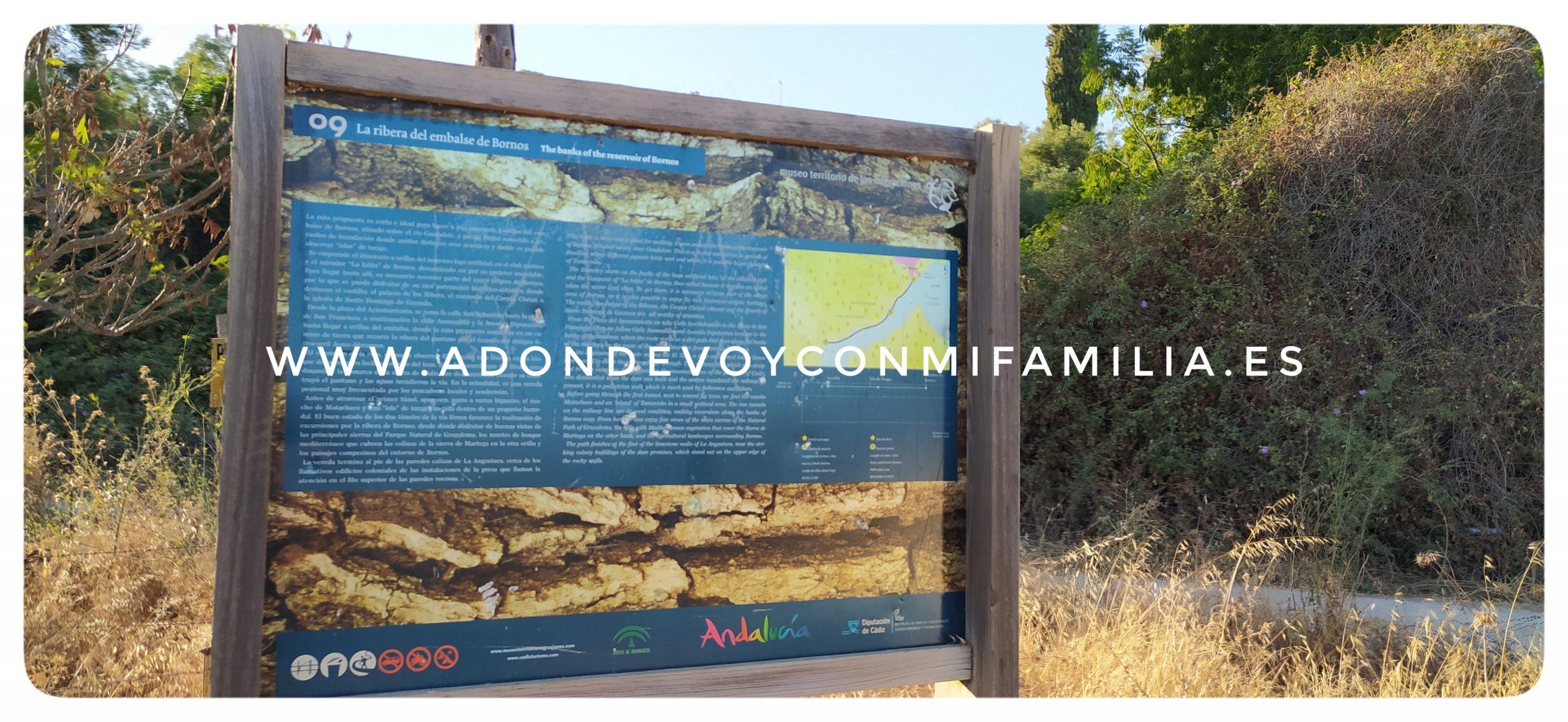 bornos adondevoyconmifamilia (17)