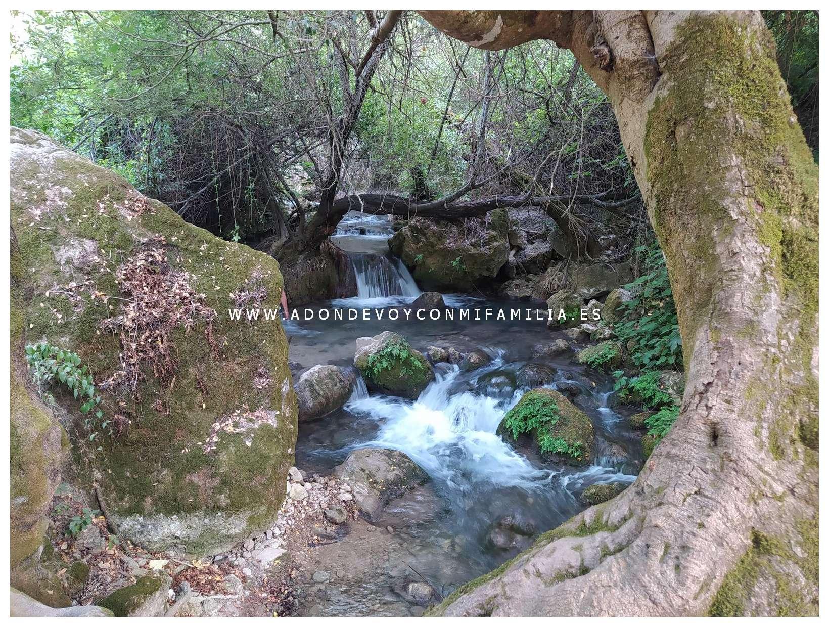 sendero rio majaceite adondevoyconmifamilia 18