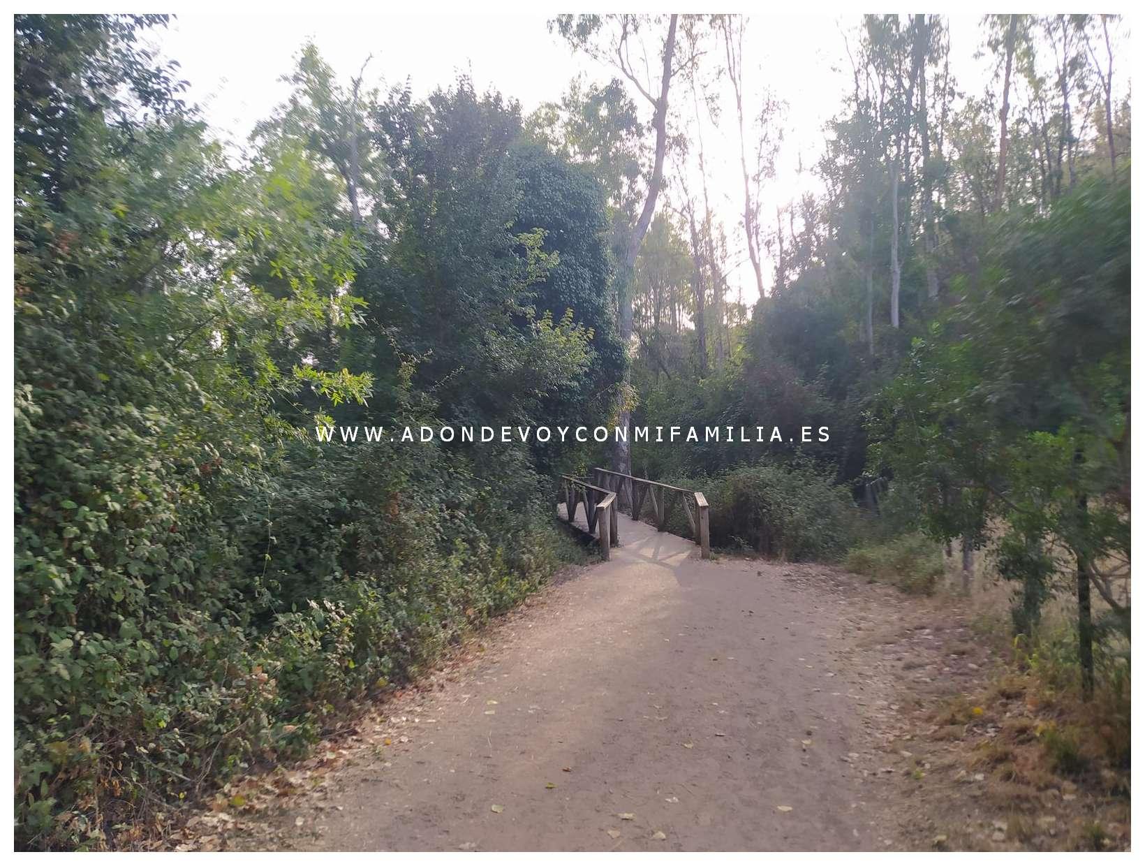 sendero rio majaceite adondevoyconmifamilia 23
