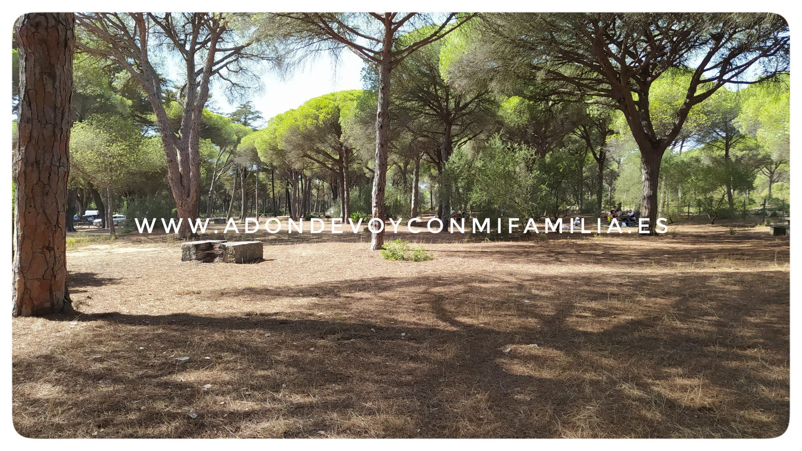 area recreativa majales del sol adondevoyconmifamilia (4)