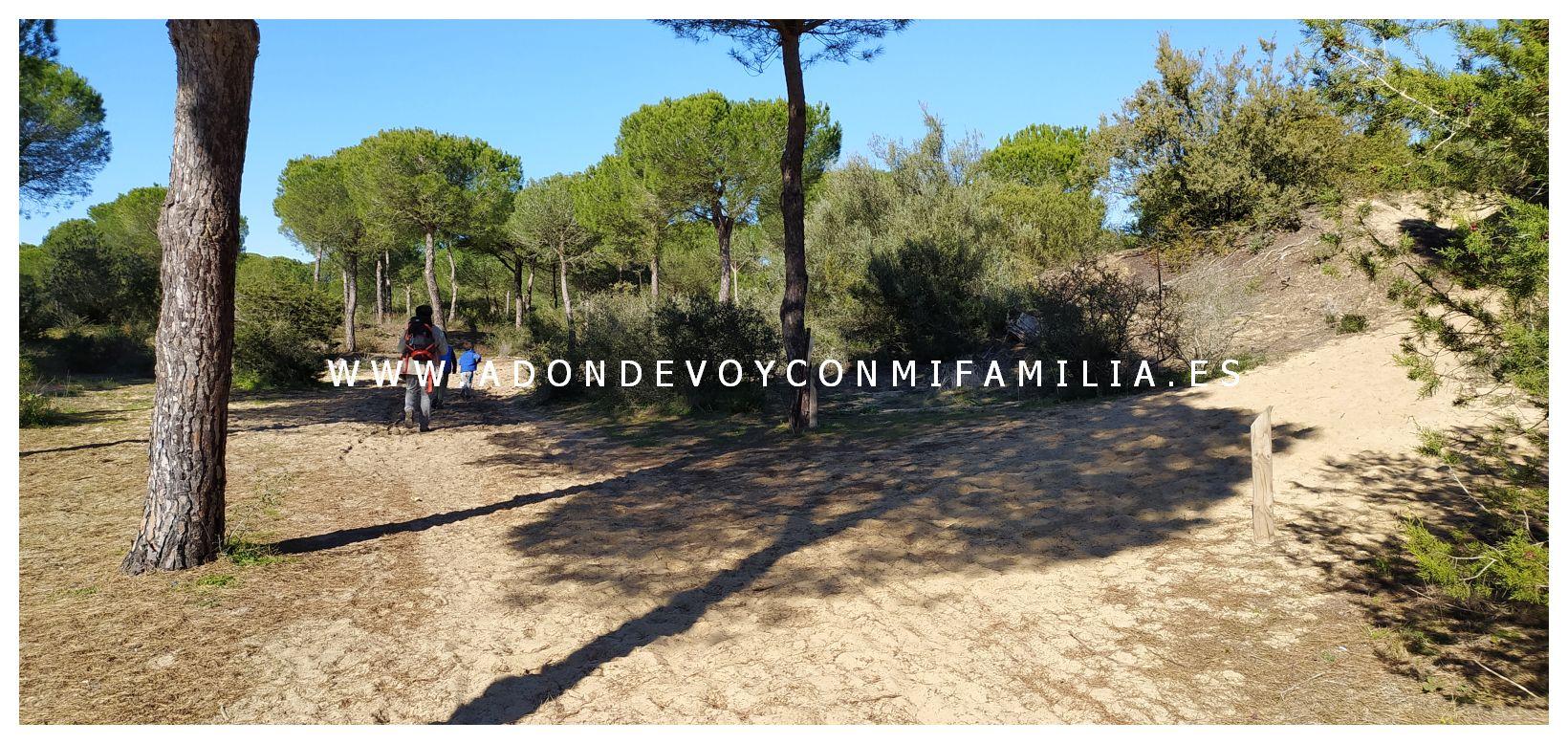 sendero cerro del aguila pinar de la algaida sanlucar adondevoyconmifamilia 16