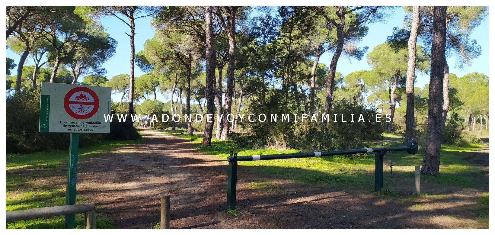 sendero cerro del aguila pinar de la algaida sanlucar adondevoyconmifamilia 27