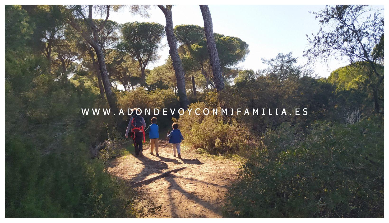 sendero cerro del aguila pinar de la algaida sanlucar adondevoyconmifamilia 36