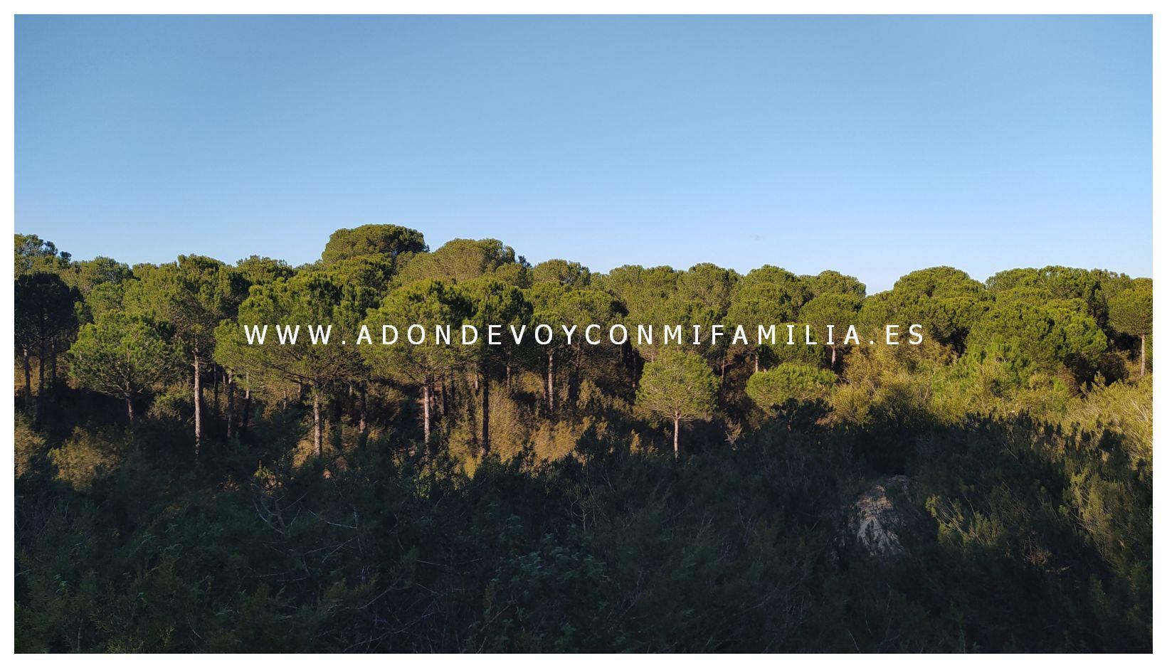 sendero cerro del aguila pinar de la algaida sanlucar adondevoyconmifamilia 37