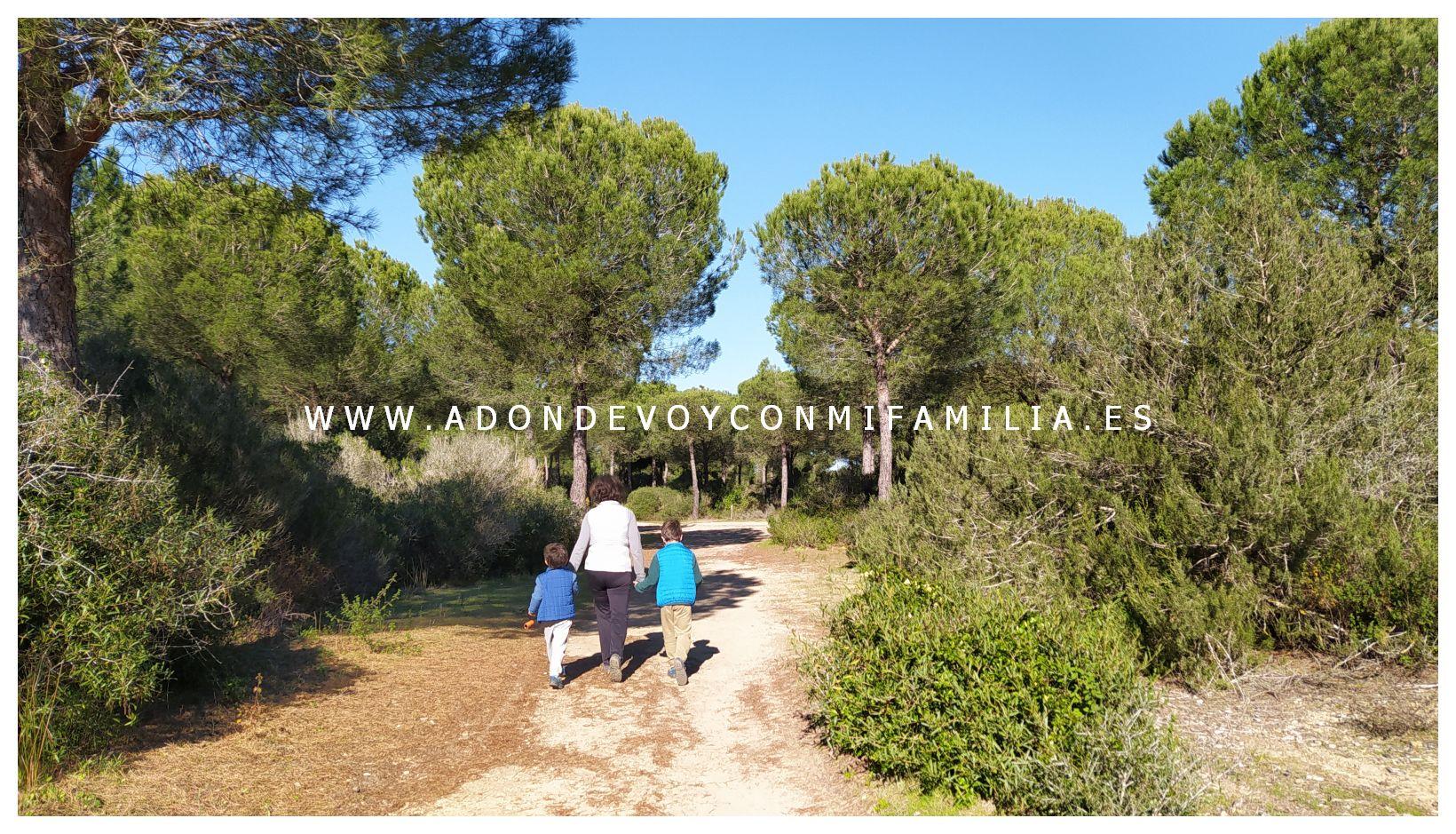 sendero cerro del aguila pinar de la algaida sanlucar adondevoyconmifamilia 58
