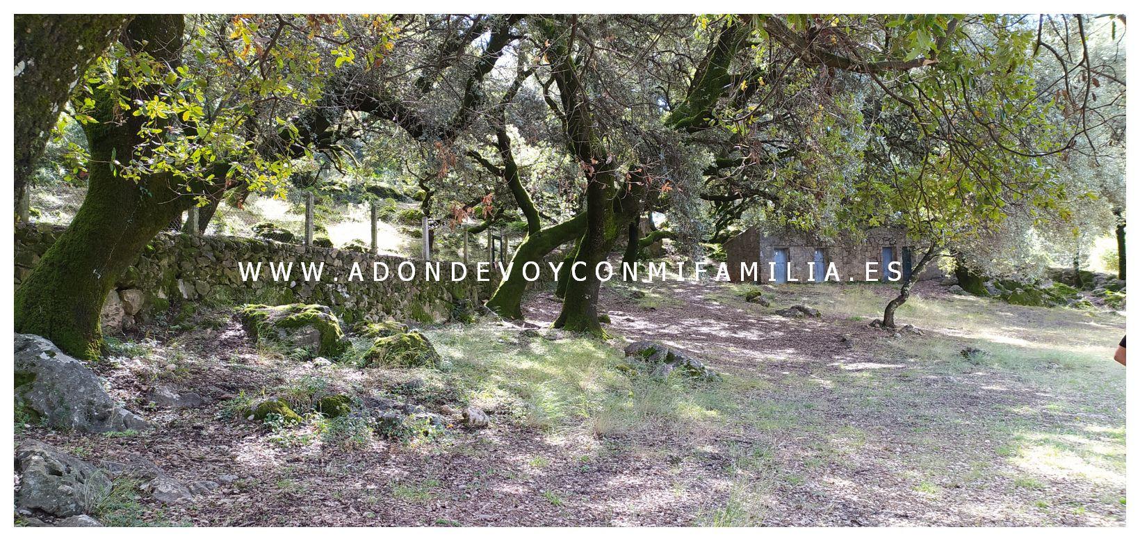 area recreativa los llanos del campo adondevoyconmifamilia 18