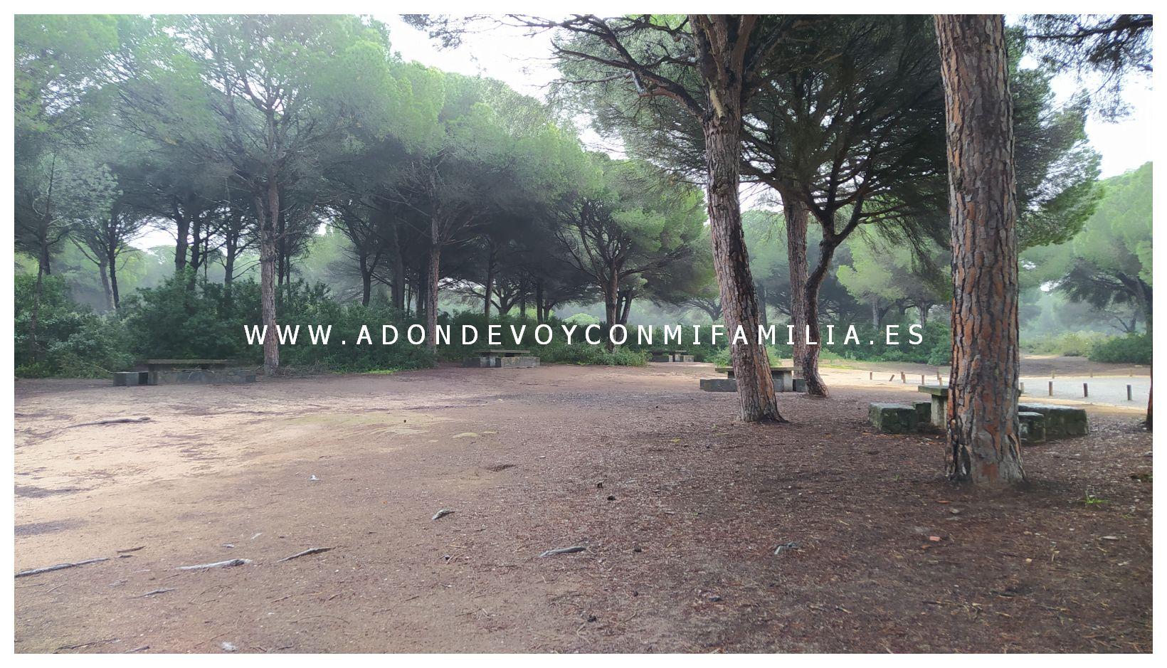 area recreativa dehesa de las yeguas adondevoyconmifamilia 02