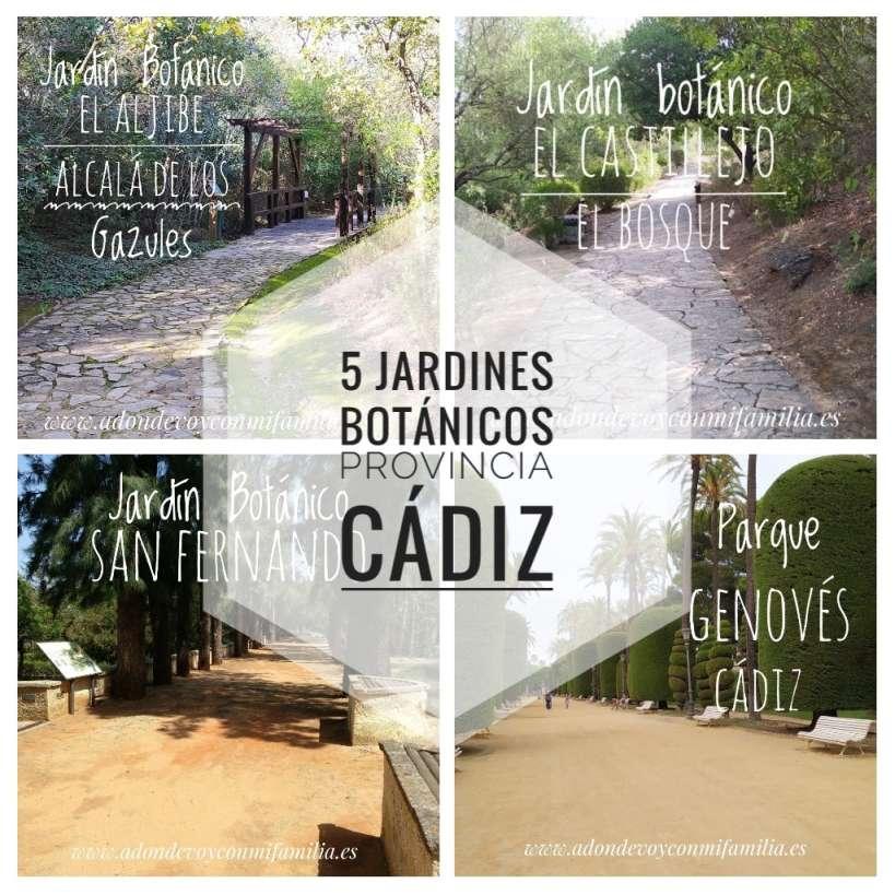 5 jardines botanicos provincia cadiz adondevoyconmifamilia portada