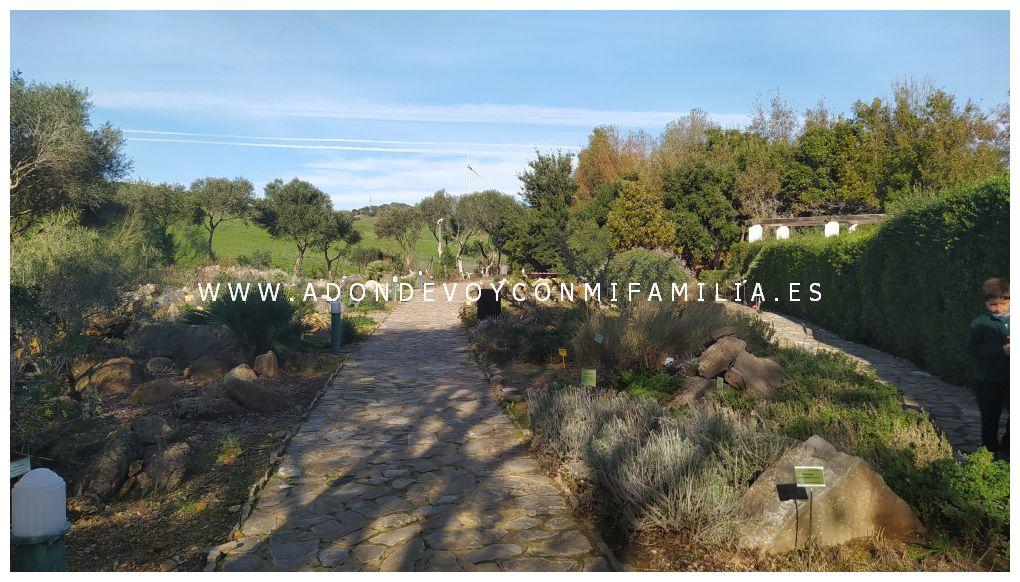 jardín botánico el aljibe alcala de los gazules adondevoyconmifamilia 01