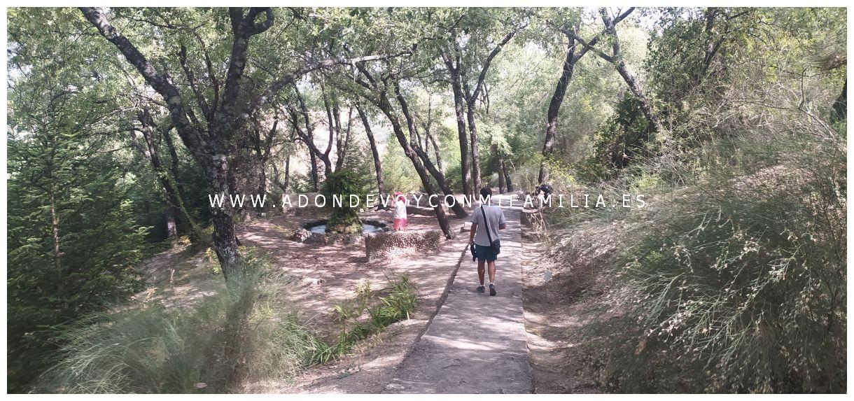 jardín botánico el castillejo el bosque adondevoyconmifamilia 05